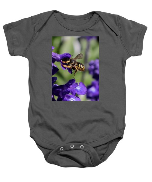 Carder Bee On Salvia Baby Onesie