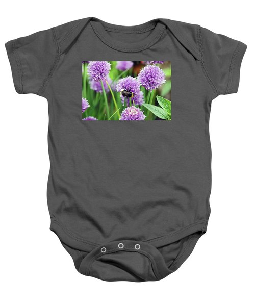 Chorley. Picnic In The Park. Bee In The Chives. Baby Onesie