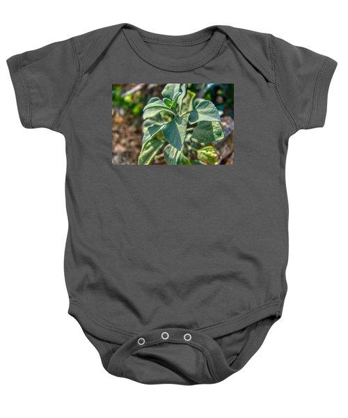 Desert Plant Life Baby Onesie