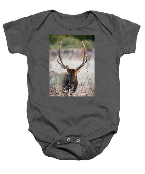 Elk Portrait Baby Onesie