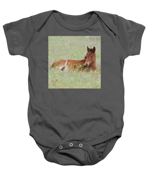 Baby Onesie featuring the photograph Foal In The Flowers by Mary Hone