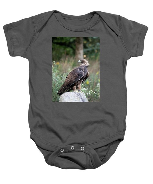 Golden Eagle On Rock 92515 Baby Onesie