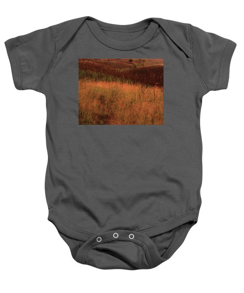 Grasses And Sugarcane, Trinidad Baby Onesie