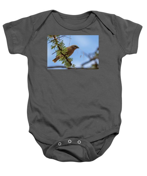 Gray-headed Social Weaver Baby Onesie