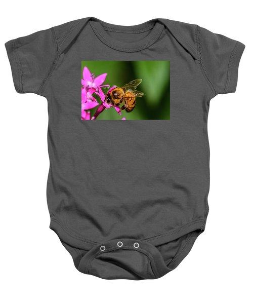 Honey Bee Baby Onesie