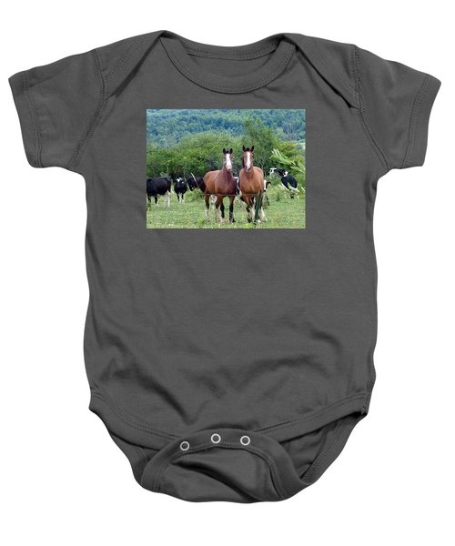 Horses And Cows.  Baby Onesie