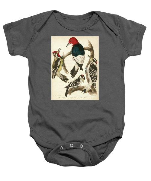 1. Red-headed Woodpecker. 2. Yellow-bellied Woodpecker. 3. Hairy Woodpecker. 4. Downy Woodpecker. Baby Onesie