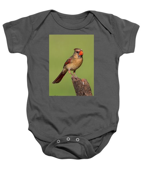 Lady Cardinal Baby Onesie