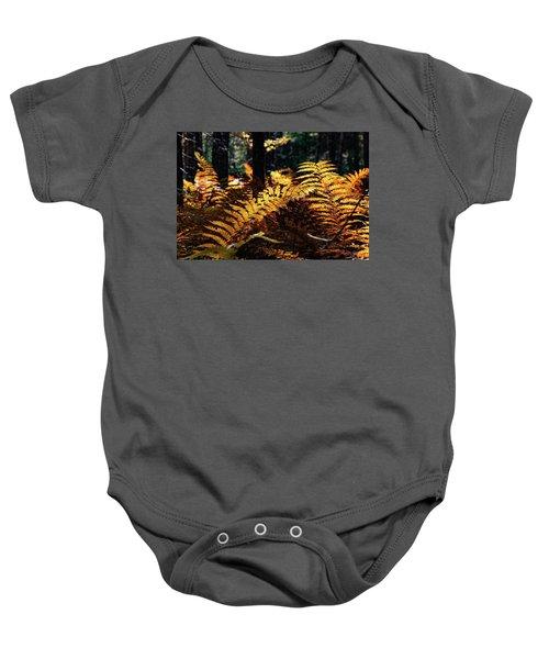 Maine Autumn Ferns Baby Onesie