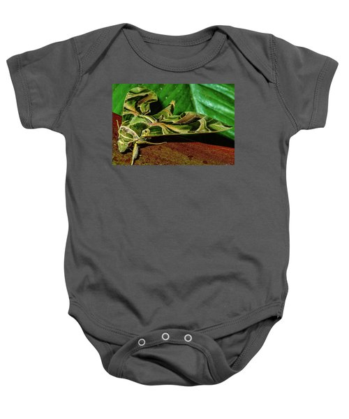 Baby Onesie featuring the photograph Oleander Hawk Moth by John Bauer