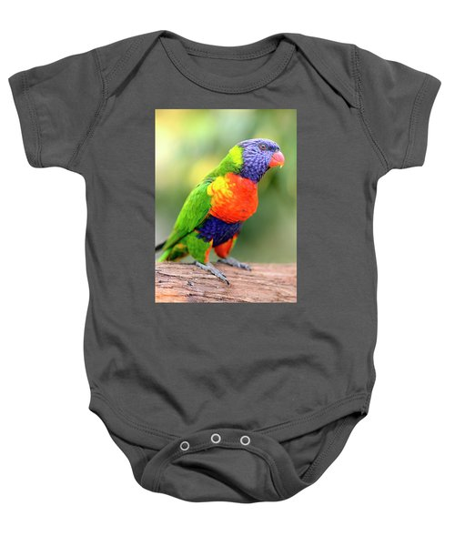 Rainbow Lorikeet Baby Onesie