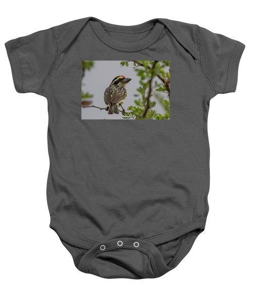 Red-fronted Barbet Baby Onesie