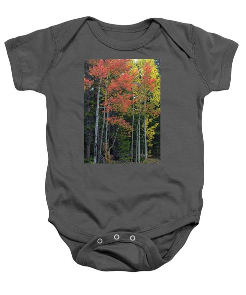 Baby Onesie featuring the photograph Rocky Mountain Forest Reds by James BO Insogna