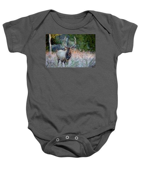 Rocky Mountain Wildlife Bull Elk Sunrise Baby Onesie