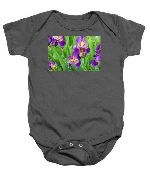 Royal Purple Irise Baby Onesie