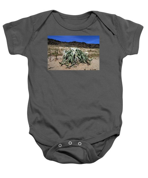 Star Lilys Its Springtime In The Rockys Baby Onesie