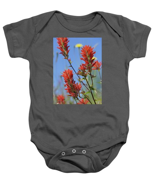 Scarlet Indian Paintbrush At Mount St. Helens National Volcanic  Baby Onesie