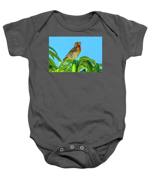 Singing House Finch Baby Onesie
