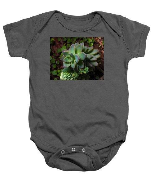 Small Succulents Baby Onesie