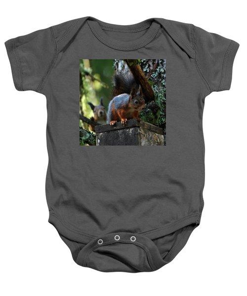 Squirrels Baby Onesie