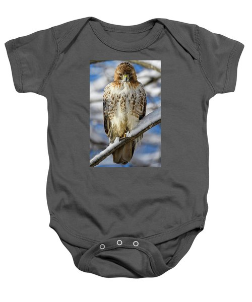 The Look, Red Tailed Hawk 1 Baby Onesie