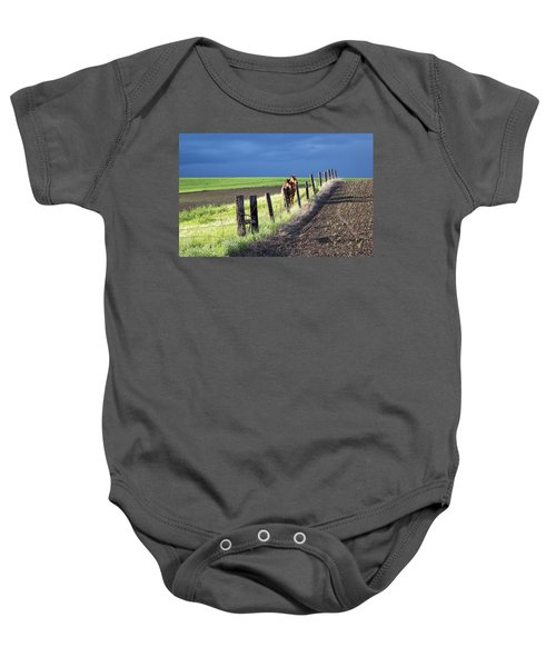 Two Horses In The Palouse Baby Onesie