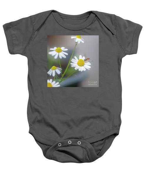 Wasp Visiting A Camomile Flower J1 Baby Onesie
