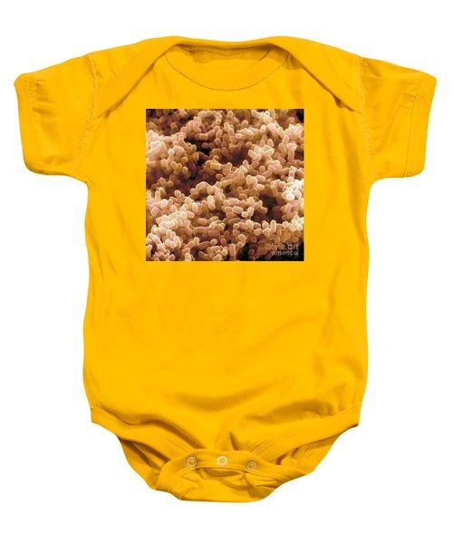 Sem Of Escherichia Coli Baby Onesie