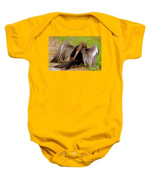 Anhinga Anhinga Anhinga Preening Baby Onesie by Millard H. Sharp