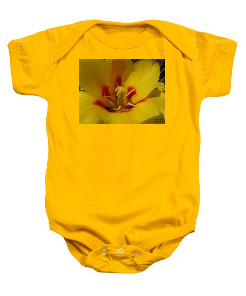 Be Drawn In - Signed Baby Onesie