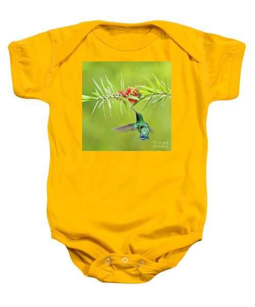 Honey Sucking Baby Onesie