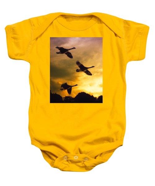The Journey South Baby Onesie