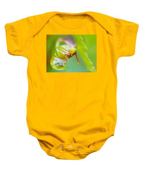 Wet Grape Leaf  Baby Onesie