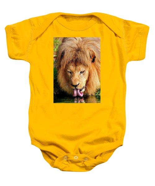 Lion Drinking Baby Onesie
