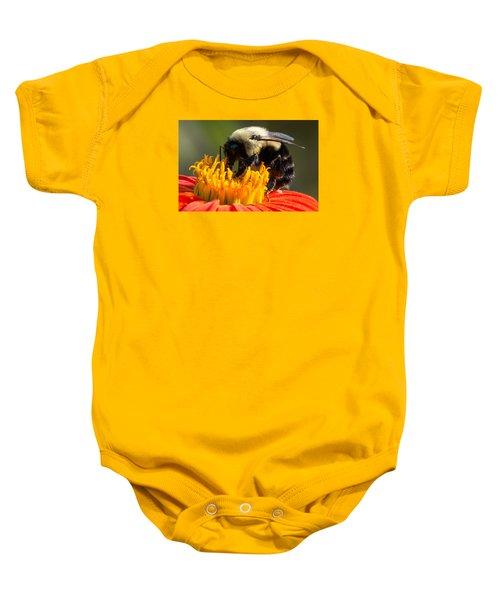 Bumble Bee Baby Onesie
