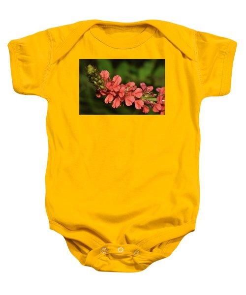 Creeping Indigo - Indigofera Spicata Baby Onesie