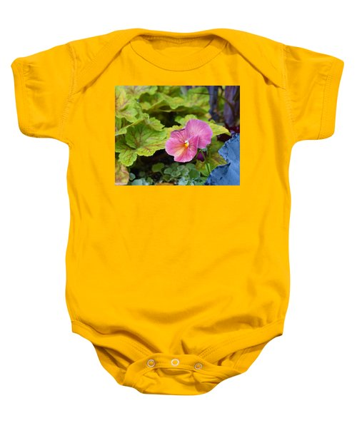 2015 After The Frost At The Garden Pansies 3 Baby Onesie