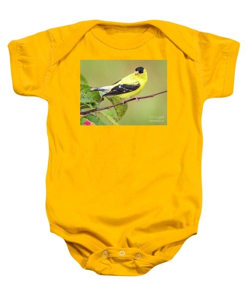American Goldfinch Baby Onesie
