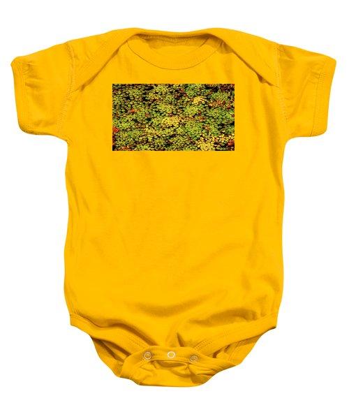 A Botanical Mosaic Baby Onesie