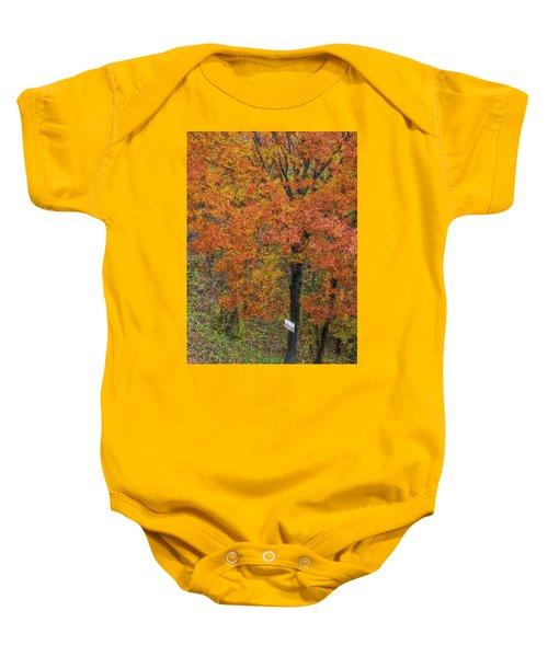 Autumn Tree Baby Onesie