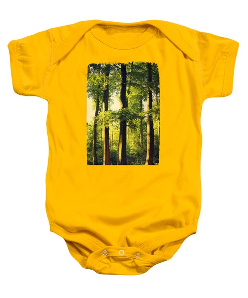 Beech Tree Forest In Evening Light Baby Onesie