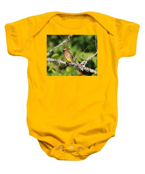 Cedar Waxwing  Baby Onesie by Carol R Montoya