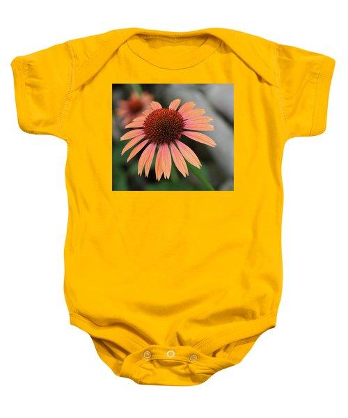 Color Baby Onesie