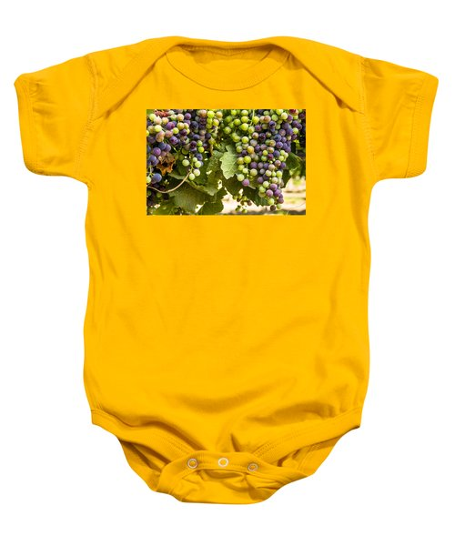Colorful Red Wine Grape Baby Onesie