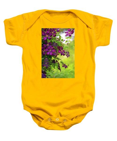 Copious Clematis Baby Onesie