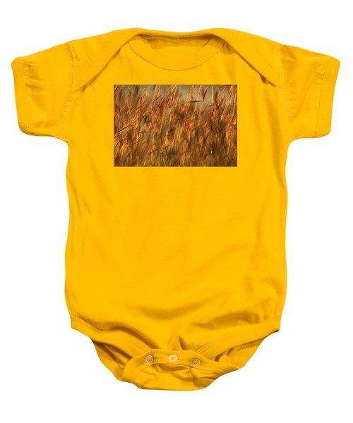 Fields Of Golden Grains Baby Onesie