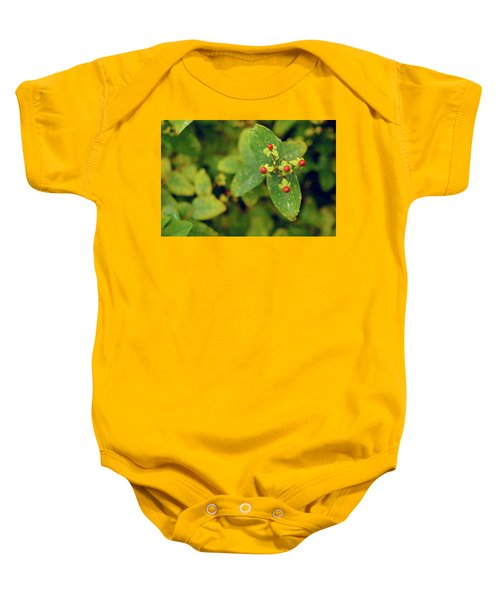 Fall Berry Baby Onesie