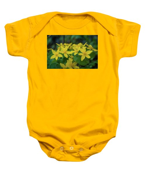Baby Onesie featuring the photograph Gold In The Marsh by Bill Pevlor