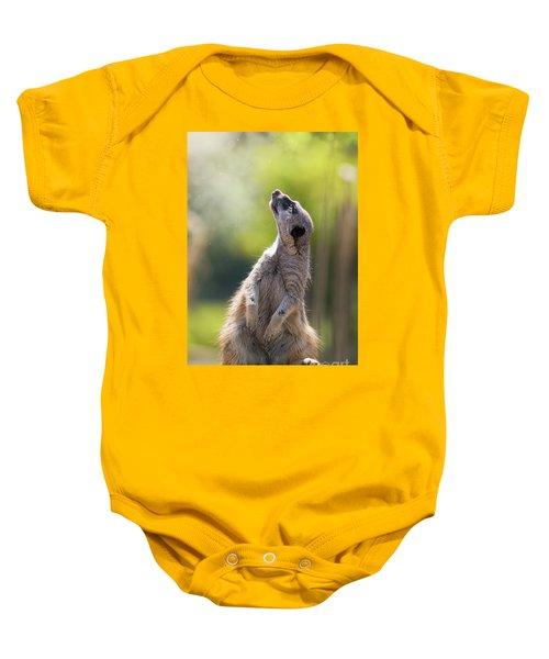 Magical Meerkat Baby Onesie