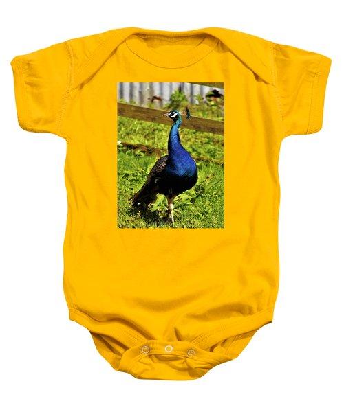 Male Peacock Baby Onesie